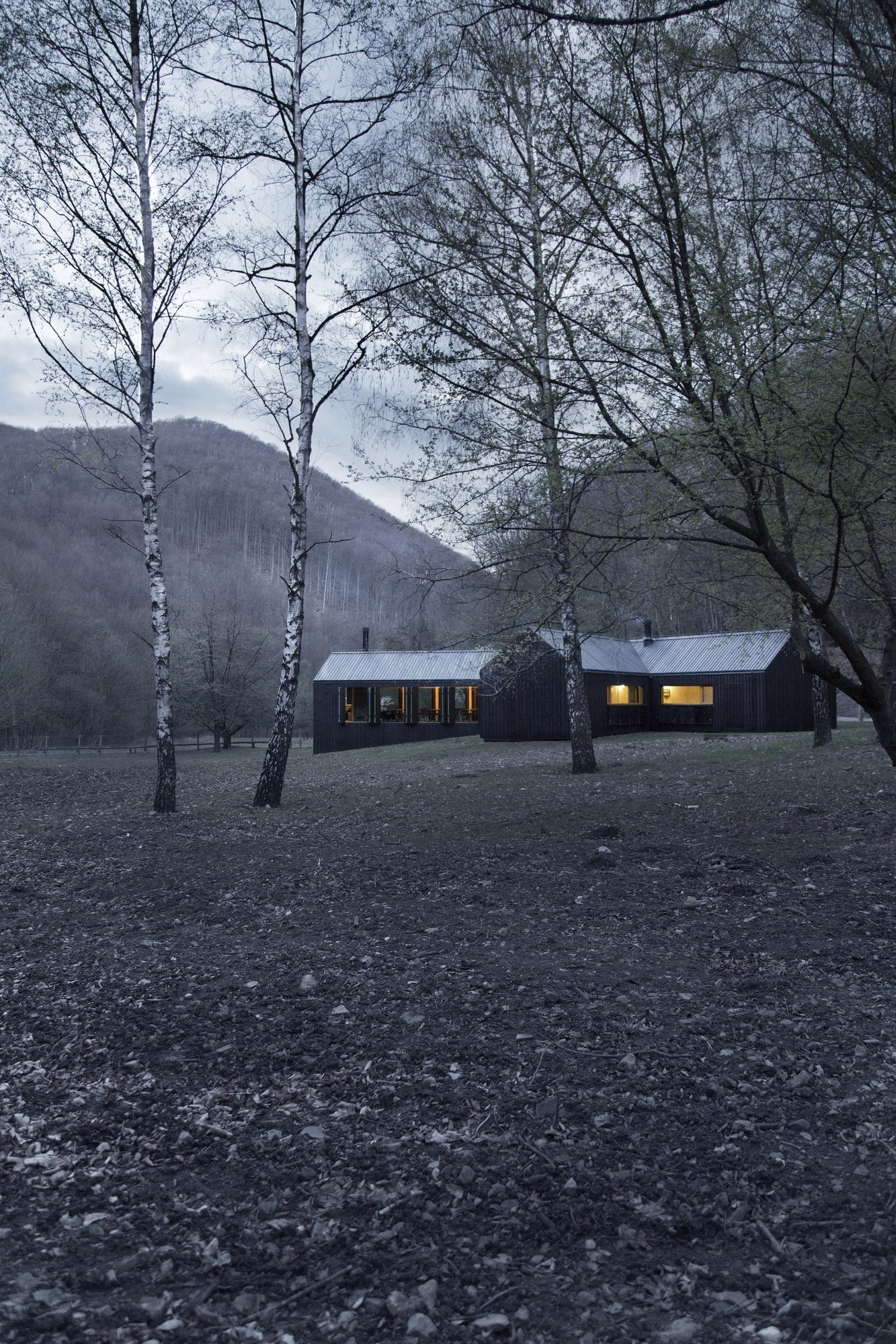 Forest-cabin-02-min